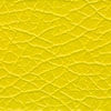 Care & Leisure<br />Manhattan Plains Yellow