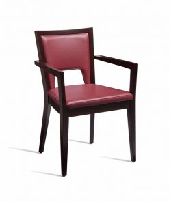 , Shop Main Backup, Home Care Chairs, Home Care Chairs